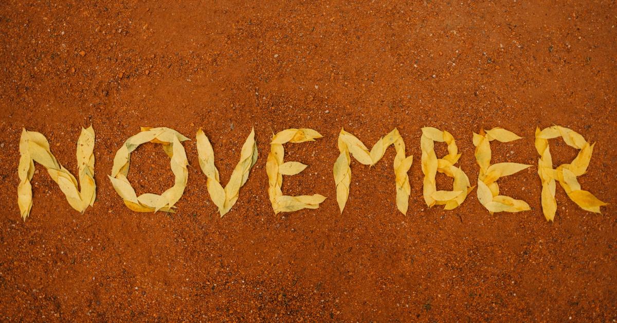 Lee más sobre el artículo Noviembre ¡Es el momento de cambiar de seguro medico!