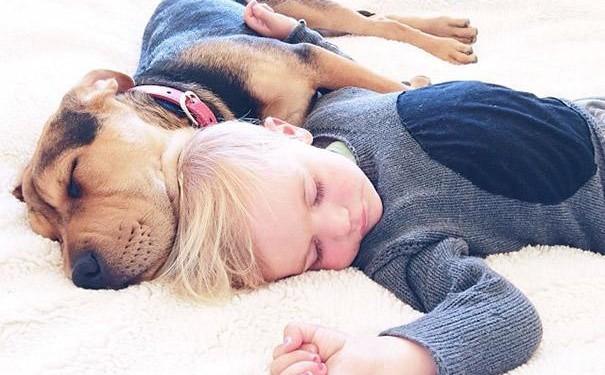 bebe-duerme-con-perro18